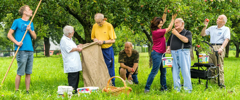 Lebenshilfe - Mitglieder bei der Apfelernte
