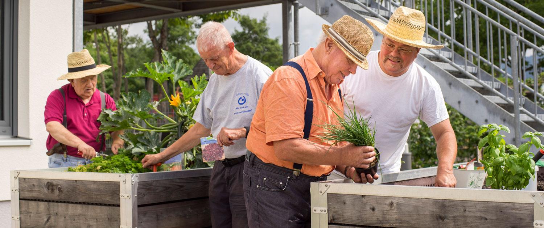 Lebenshilfe - Senioren bei der Hochbeetgestaltung