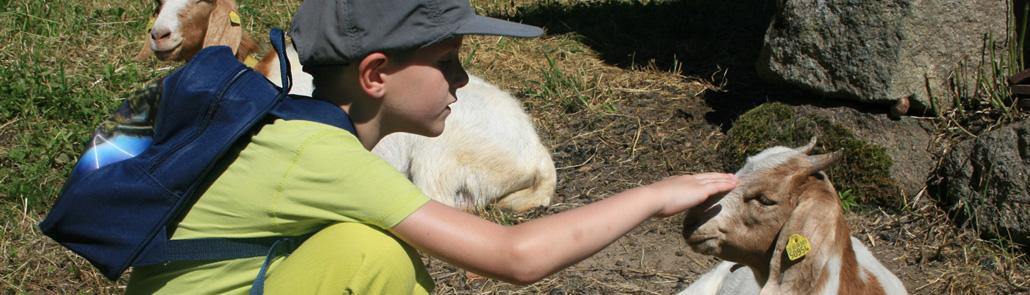 Lebenshilfe - Ferienbetreuung - Junge streichelt Ziege